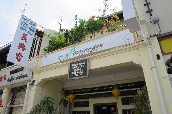 Wild Coriander in Malacca